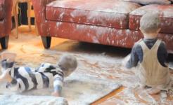 Ob sie nun für das Chaos verantwortlich waren oder nicht: Spaß dürften die zwei Jungs in ihrem Mehlbad allemal gehabt haben (Screenshot)