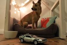Hund, Wasser, DeLorean: 3 Objekte der kindlichen Begierde, die Kid A verwehrt bleiben sollten