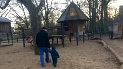 Genießen offenbar beide die gemeinsame Zeit: Vater Thomas und Sohn Joshua in Berlin-Kreuzberg