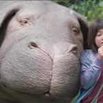 """Warum ich trotz """"Okja"""" und Jonathan Safran Foer noch immer Fleisch esse"""